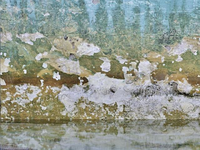 Fairy Bower Rock Pool Perrin Clarke Photography